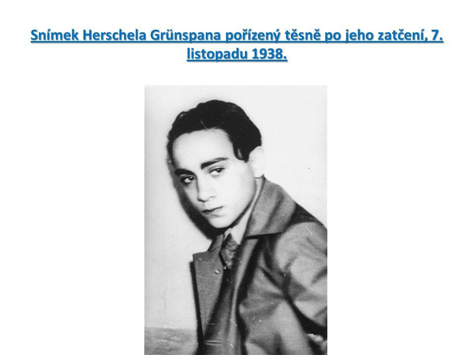 Snímek Herschela Grünspana pořízený těsně po jeho zatčení, 7. listopadu 1938.