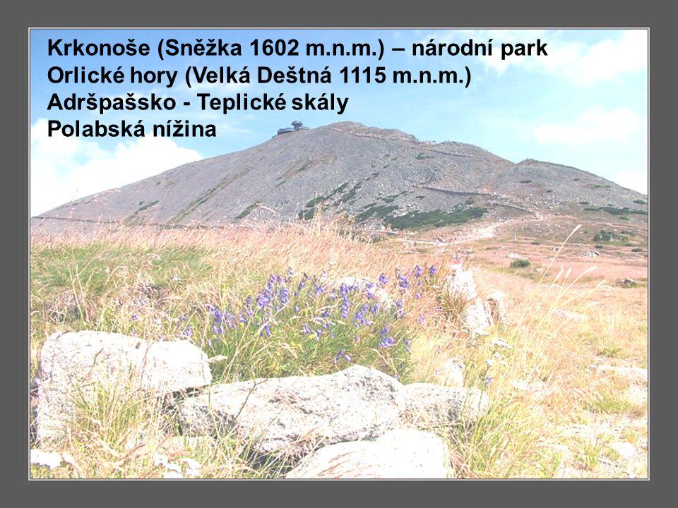 Povrch Krkonoše (Sněžka 1602 m.n.m.) – národní park Orlické hory (Velká Deštná 1115 m.n.m.) Adršpašsko - Teplické skály Polabská nížina