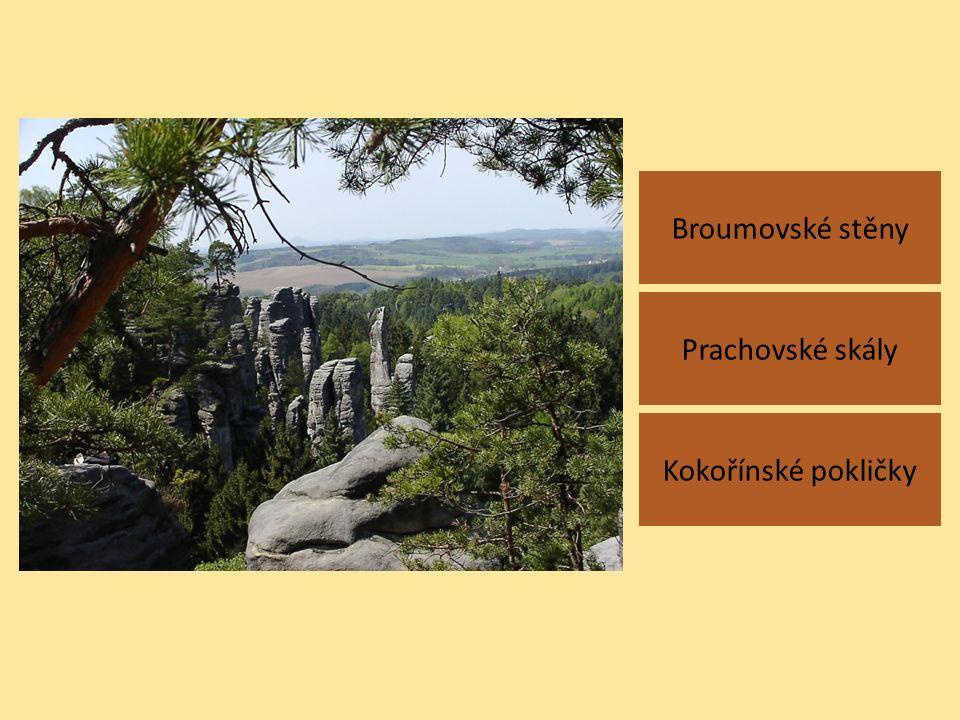 Broumovské stěny Kokořínské pokličky Prachovské skály