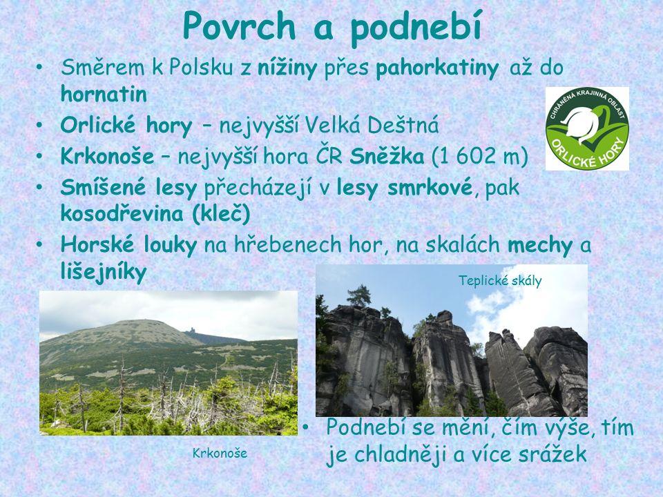 Povrch a podnebí Směrem k Polsku z nížiny přes pahorkatiny až do hornatin Orlické hory – nejvyšší Velká Deštná Krkonoše – nejvyšší hora ČR Sněžka (1 602 m) Smíšené lesy přecházejí v lesy smrkové, pak kosodřevina (kleč) Horské louky na hřebenech hor, na skalách mechy a lišejníky Podnebí se mění, čím výše, tím je chladněji a více srážek Krkonoše Teplické skály
