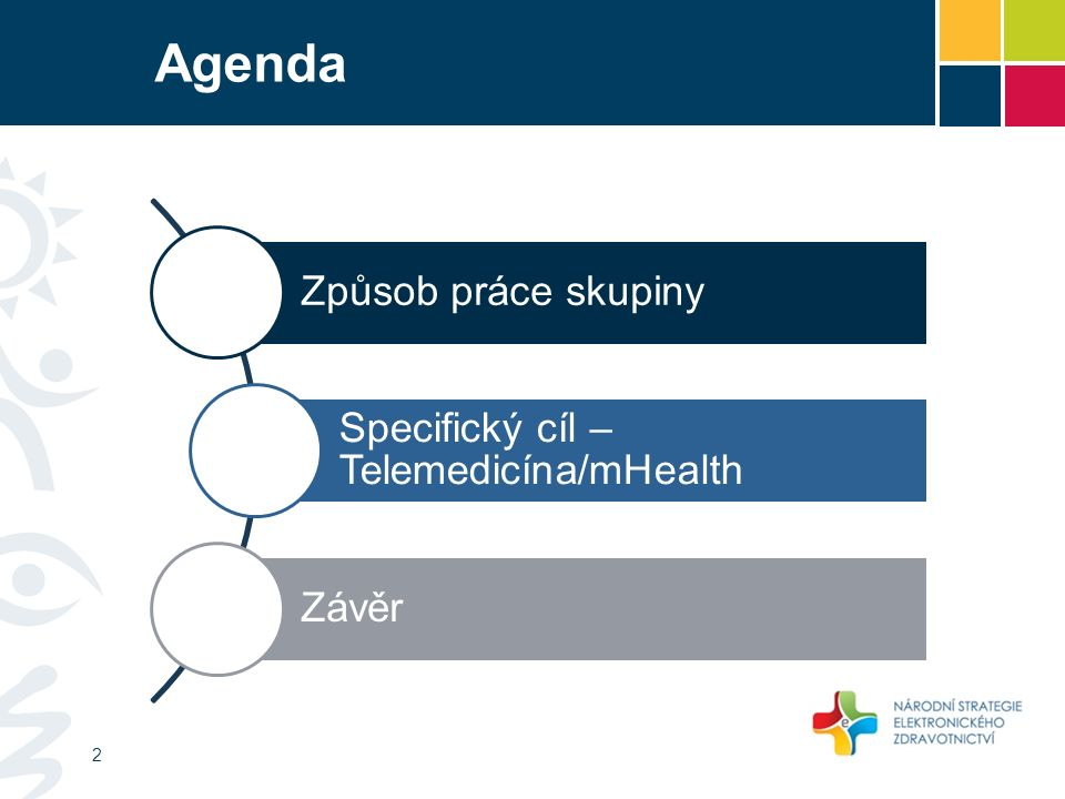 Agenda Způsob práce skupiny Specifický cíl – Telemedicína/mHealth Závěr 2