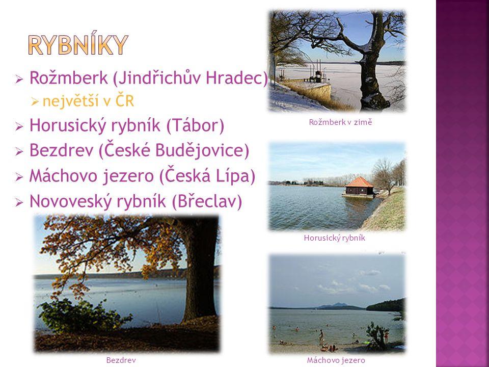  Rožmberk (Jindřichův Hradec)  největší v ČR  Horusický rybník (Tábor)  Bezdrev (České Budějovice)  Máchovo jezero (Česká Lípa)  Novoveský rybní
