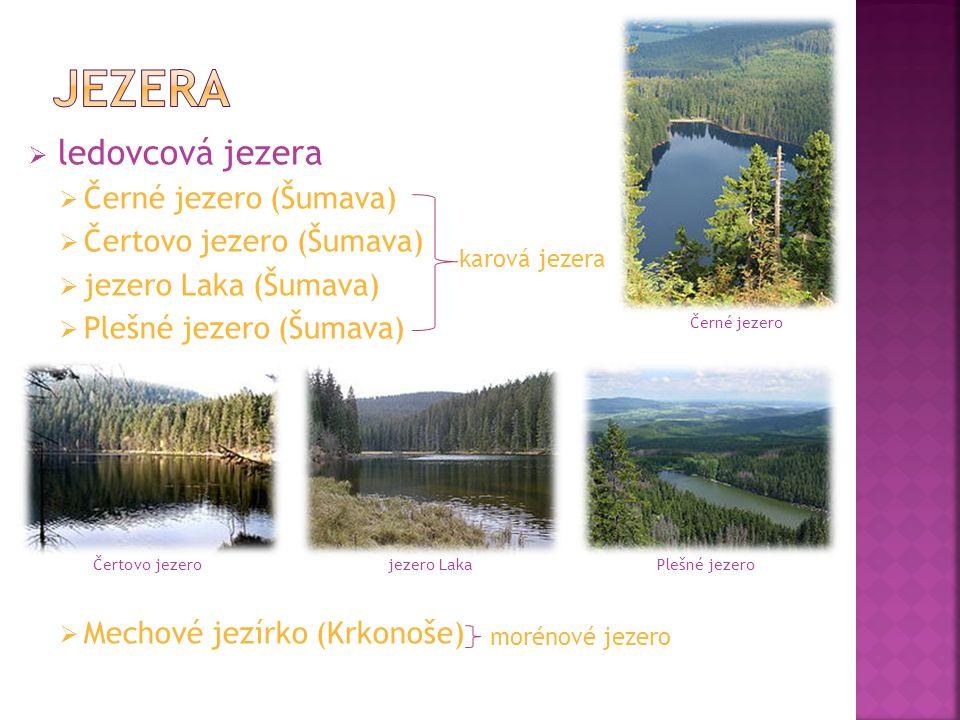  rašelinná jezera (postupně zanikají - zarůstají)  Chalupské jezírko (Šumava)  Velké mechové jezírko (Jeseníky)  Velké Jeřábí jezírko (Krušné hory)  Černá jezírka (Jizerské hory) Chalupské jezeroVelké mechové jezírko