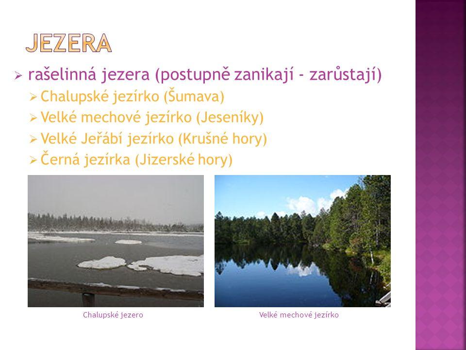  rašelinná jezera (postupně zanikají - zarůstají)  Chalupské jezírko (Šumava)  Velké mechové jezírko (Jeseníky)  Velké Jeřábí jezírko (Krušné hory