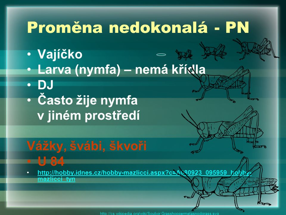 Proměna nedokonalá - PN Vajíčko Larva (nymfa) – nemá křídla DJ Často žije nymfa v jiném prostředí Vážky, švábi, škvoři U 84 http://hobby.idnes.cz/hobb