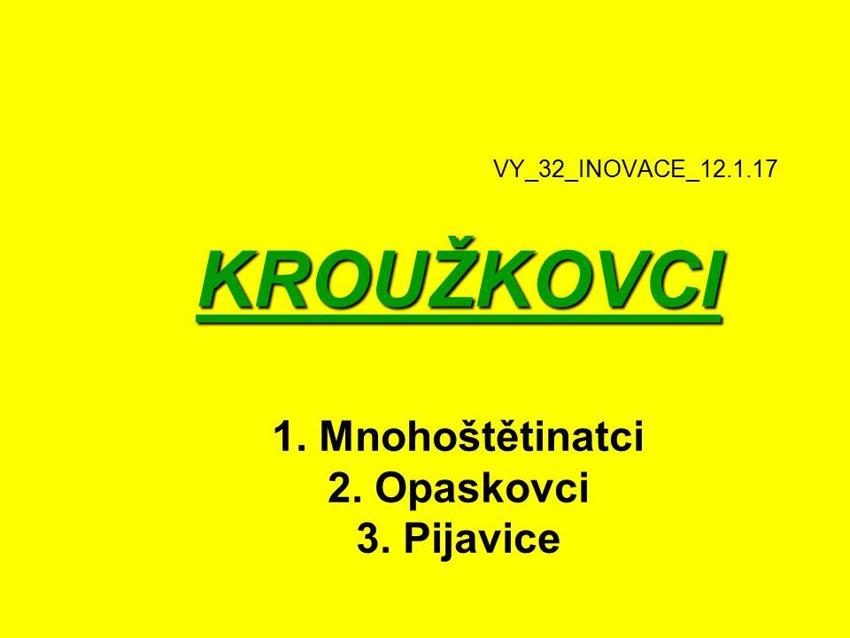VY_32_INOVACE_12.1.17 KROUŽKOVCI 1. Mnohoštětinatci 2. Opaskovci 3. Pijavice