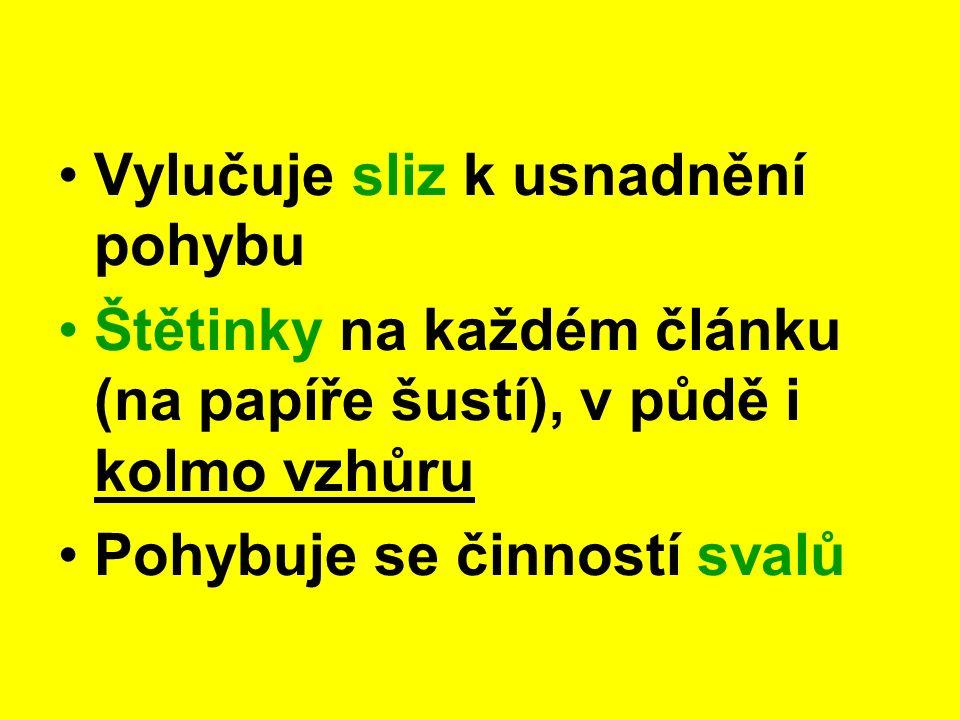 Chobotnatka rybí Ve sladkých vodách P: sání krve rybám (přenos chorob) U 67