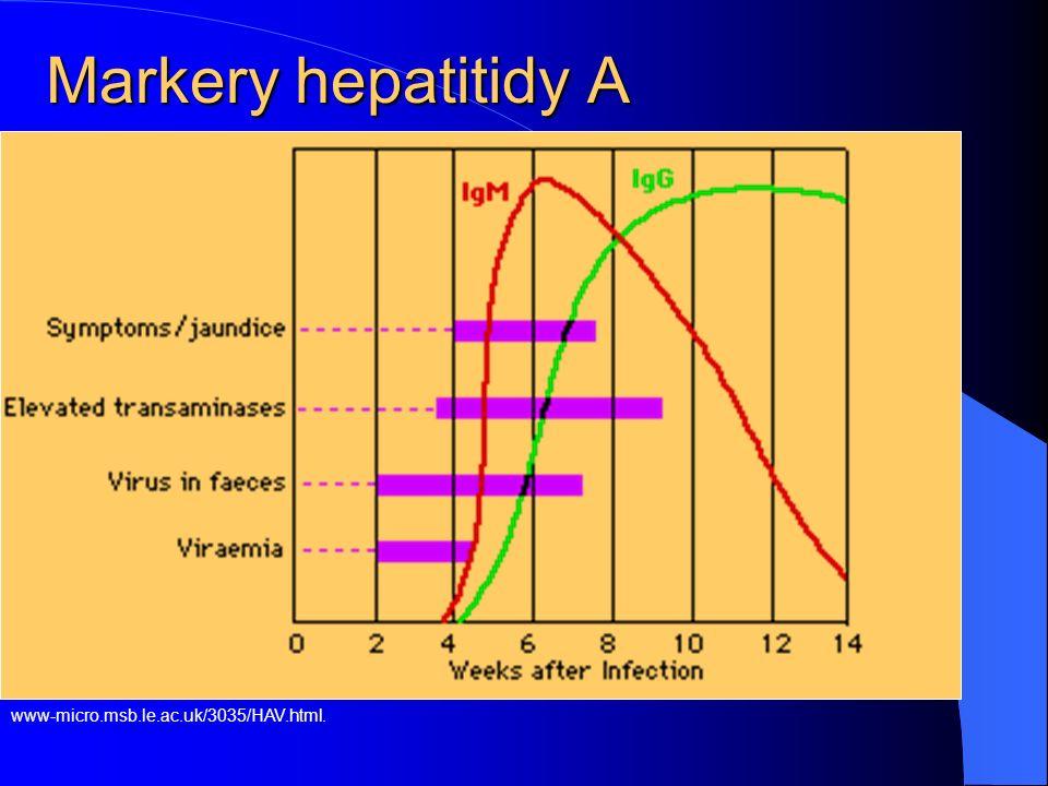 Markery hepatitidy A www-micro.msb.le.ac.uk/3035/HAV.html.