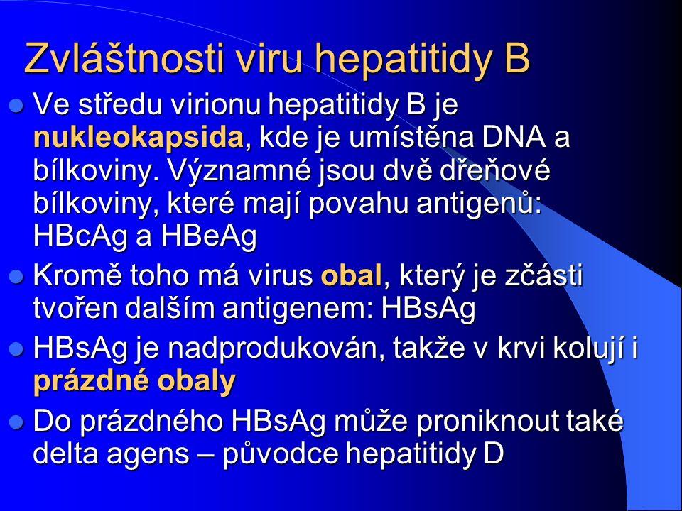 Zvláštnosti viru hepatitidy B Ve středu virionu hepatitidy B je nukleokapsida, kde je umístěna DNA a bílkoviny. Významné jsou dvě dřeňové bílkoviny, k