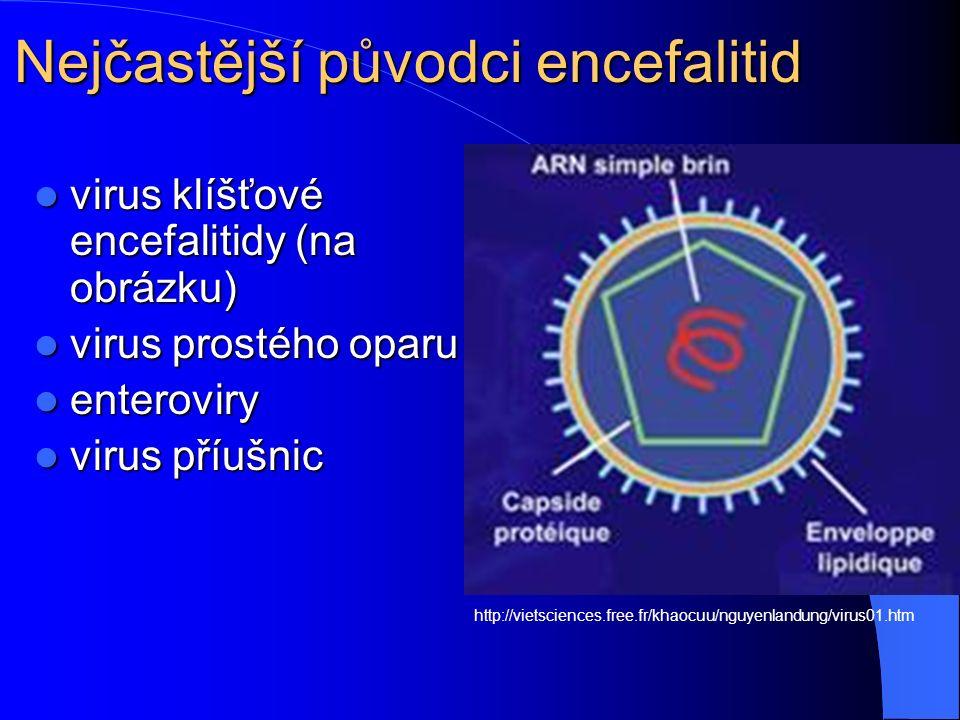 Nejčastější původci encefalitid http://vietsciences.free.fr/khaocuu/nguyenlandung/virus01.htm virus klíšťové encefalitidy (na obrázku) virus klíšťové