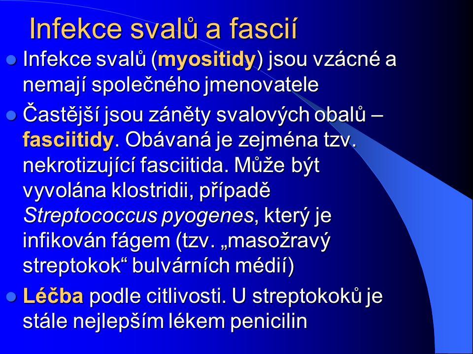 Infekce svalů a fascií Infekce svalů (myositidy) jsou vzácné a nemají společného jmenovatele Infekce svalů (myositidy) jsou vzácné a nemají společného jmenovatele Častější jsou záněty svalových obalů – fasciitidy.