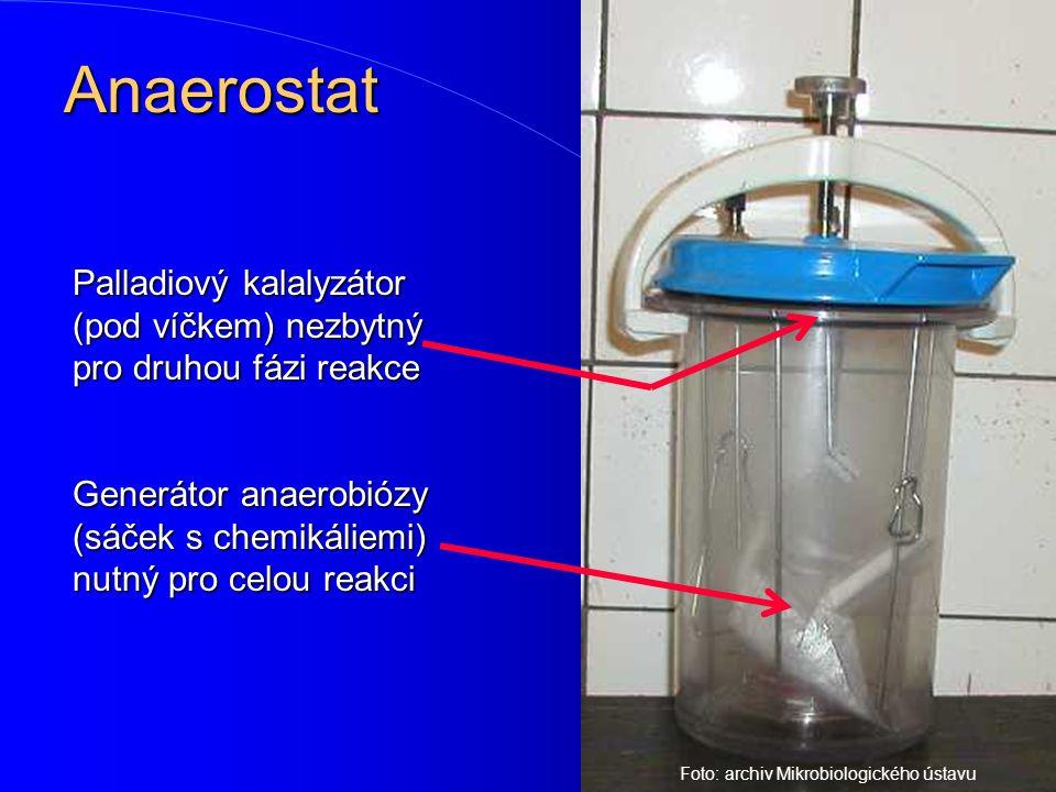 Anaerostat Palladiový kalalyzátor (pod víčkem) nezbytný pro druhou fázi reakce Generátor anaerobiózy (sáček s chemikáliemi) nutný pro celou reakci Fot