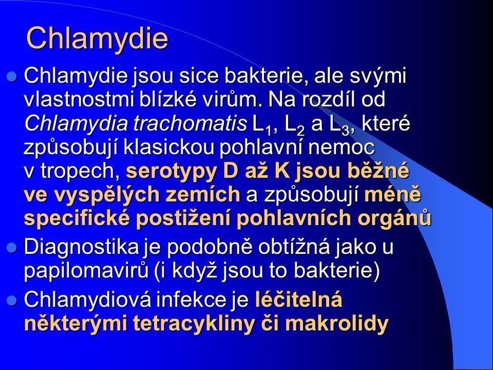 Chlamydie Chlamydie jsou sice bakterie, ale svými vlastnostmi blízké virům. Na rozdíl od Chlamydia trachomatis L 1, L 2 a L 3, které způsobují klasick