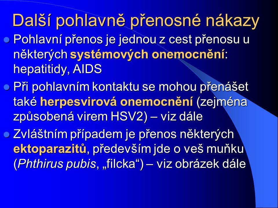 """Další pohlavně přenosné nákazy Pohlavní přenos je jednou z cest přenosu u některých systémových onemocnění: hepatitidy, AIDS Pohlavní přenos je jednou z cest přenosu u některých systémových onemocnění: hepatitidy, AIDS Při pohlavním kontaktu se mohou přenášet také herpesvirová onemocnění (zejména způsobená virem HSV2) – viz dále Při pohlavním kontaktu se mohou přenášet také herpesvirová onemocnění (zejména způsobená virem HSV2) – viz dále Zvláštním případem je přenos některých ektoparazitů, především jde o veš muňku (Phthirus pubis, """"filcka ) – viz obrázek dále Zvláštním případem je přenos některých ektoparazitů, především jde o veš muňku (Phthirus pubis, """"filcka ) – viz obrázek dále"""