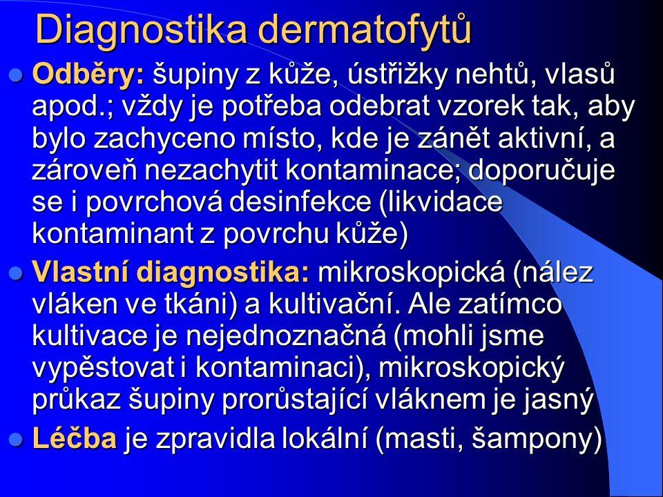 Diagnostika dermatofytů Odběry: šupiny z kůže, ústřižky nehtů, vlasů apod.; vždy je potřeba odebrat vzorek tak, aby bylo zachyceno místo, kde je zánět aktivní, a zároveň nezachytit kontaminace; doporučuje se i povrchová desinfekce (likvidace kontaminant z povrchu kůže) Odběry: šupiny z kůže, ústřižky nehtů, vlasů apod.; vždy je potřeba odebrat vzorek tak, aby bylo zachyceno místo, kde je zánět aktivní, a zároveň nezachytit kontaminace; doporučuje se i povrchová desinfekce (likvidace kontaminant z povrchu kůže) Vlastní diagnostika: mikroskopická (nález vláken ve tkáni) a kultivační.