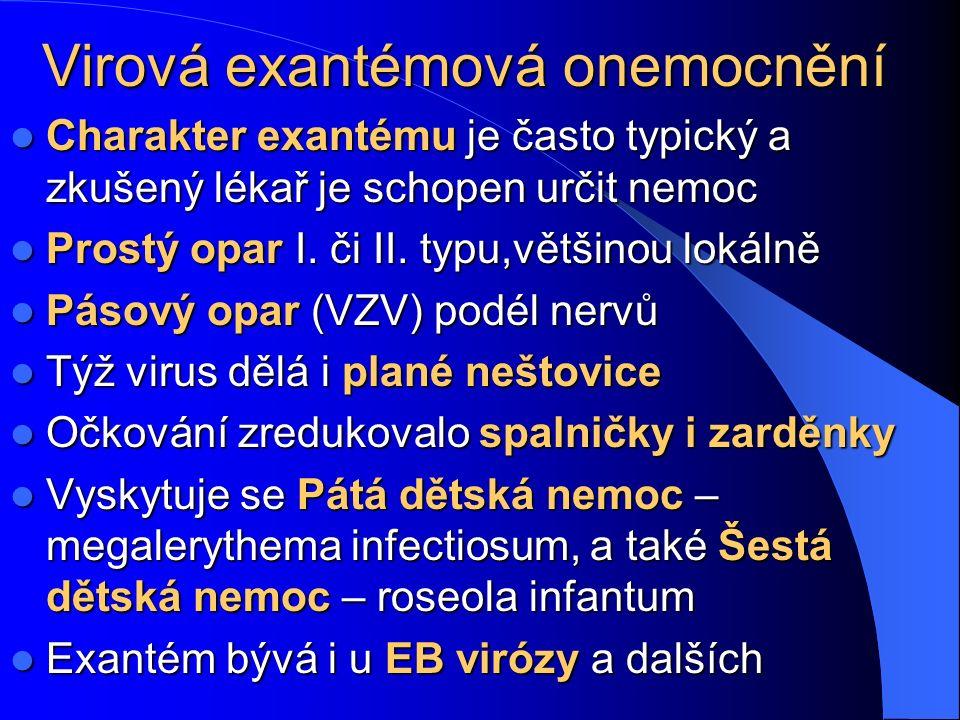 Virová exantémová onemocnění Charakter exantému je často typický a zkušený lékař je schopen určit nemoc Charakter exantému je často typický a zkušený lékař je schopen určit nemoc Prostý opar I.