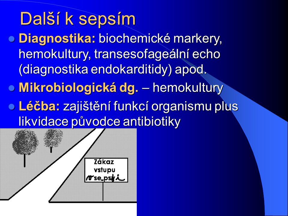 Další k sepsím Diagnostika: biochemické markery, hemokultury, transesofageální echo (diagnostika endokarditidy) apod. Diagnostika: biochemické markery