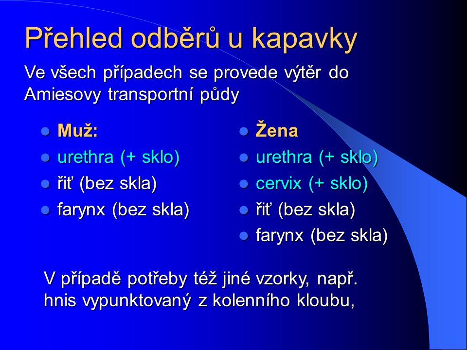 Přehled odběrů u kapavky Muž: Muž: urethra (+ sklo) urethra (+ sklo) řiť (bez skla) řiť (bez skla) farynx (bez skla) farynx (bez skla) Žena Žena urethra (+ sklo) urethra (+ sklo) cervix (+ sklo) cervix (+ sklo) řiť (bez skla) řiť (bez skla) farynx (bez skla) farynx (bez skla) V případě potřeby též jiné vzorky, např.