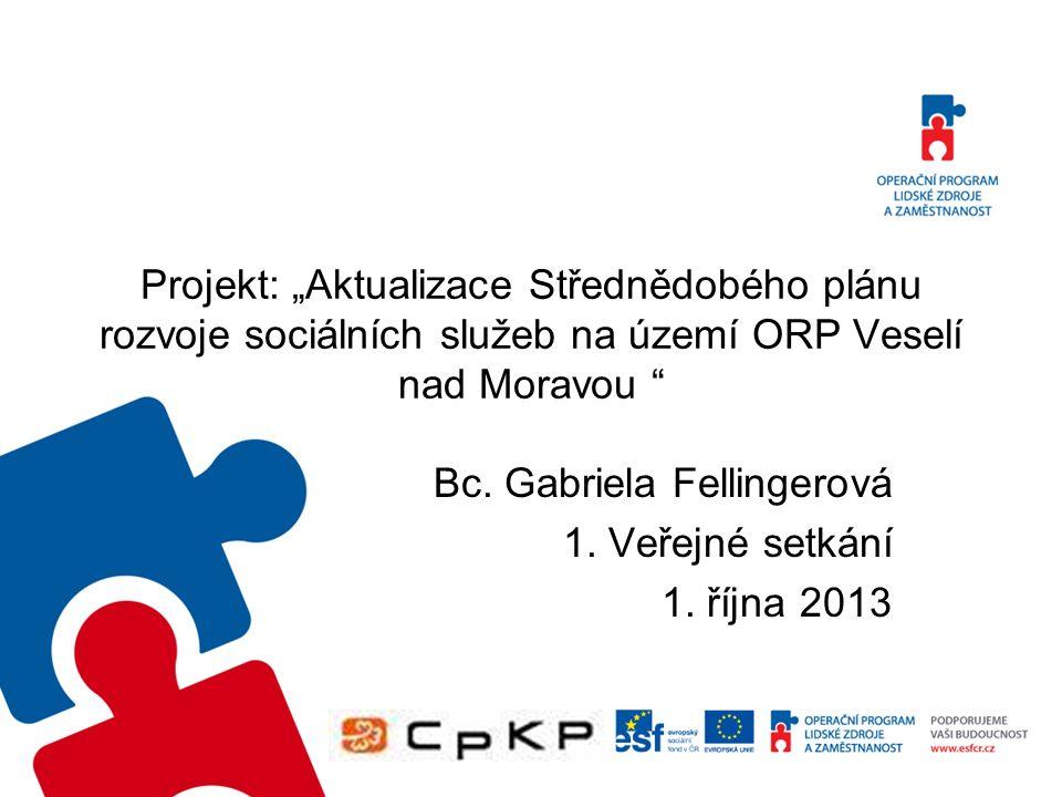 """Projekt: """"Aktualizace Střednědobého plánu rozvoje sociálních služeb na území ORP Veselí nad Moravou Bc."""
