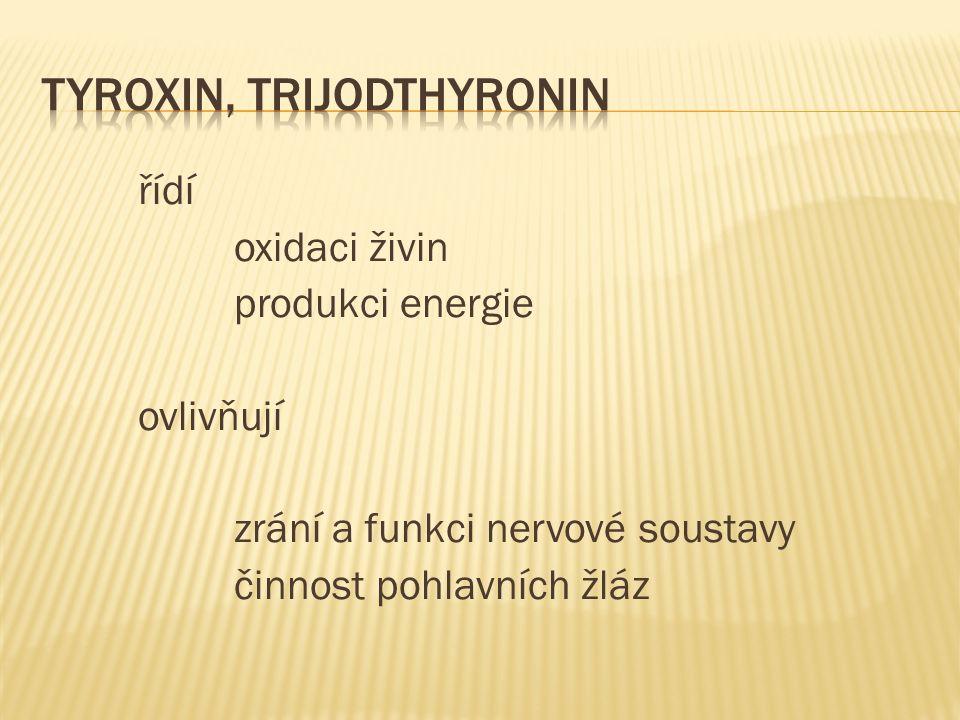 řídí oxidaci živin produkci energie ovlivňují zrání a funkci nervové soustavy činnost pohlavních žláz