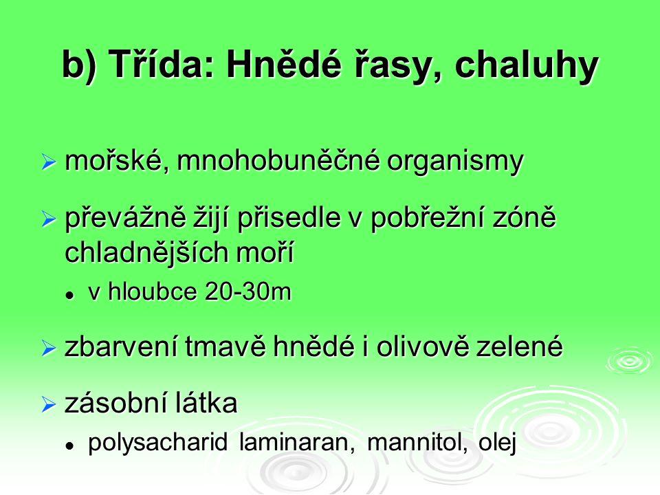 b) Třída: Hnědé řasy, chaluhy  mořské, mnohobuněčné organismy  převážně žijí přisedle v pobřežní zóně chladnějších moří v hloubce 20-30m v hloubce 20-30m  zbarvení tmavě hnědé i olivově zelené  zásobní látka polysacharid laminaran, mannitol, olej polysacharid laminaran, mannitol, olej