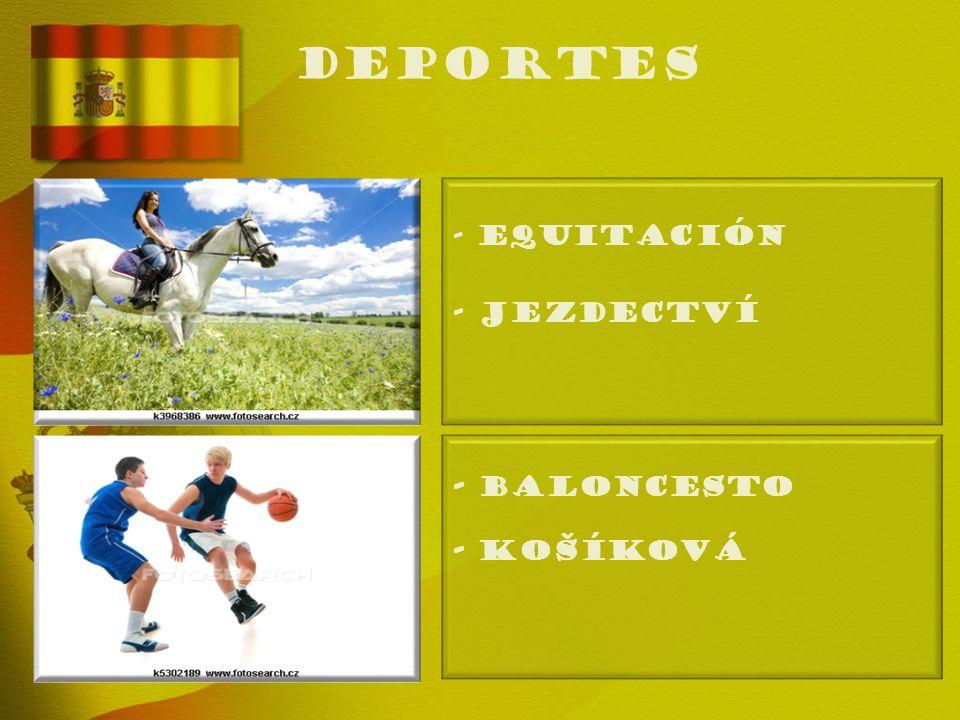deportes - EQUITACIÓN - Jezdectví - BALONCESTO - Košíková