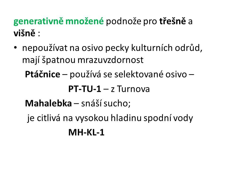 generativně množené podnože pro třešně a višně : nepoužívat na osivo pecky kulturních odrůd, mají špatnou mrazuvzdornost Ptáčnice – používá se selektované osivo – PT-TU-1 – z Turnova Mahalebka – snáší sucho; je citlivá na vysokou hladinu spodní vody MH-KL-1