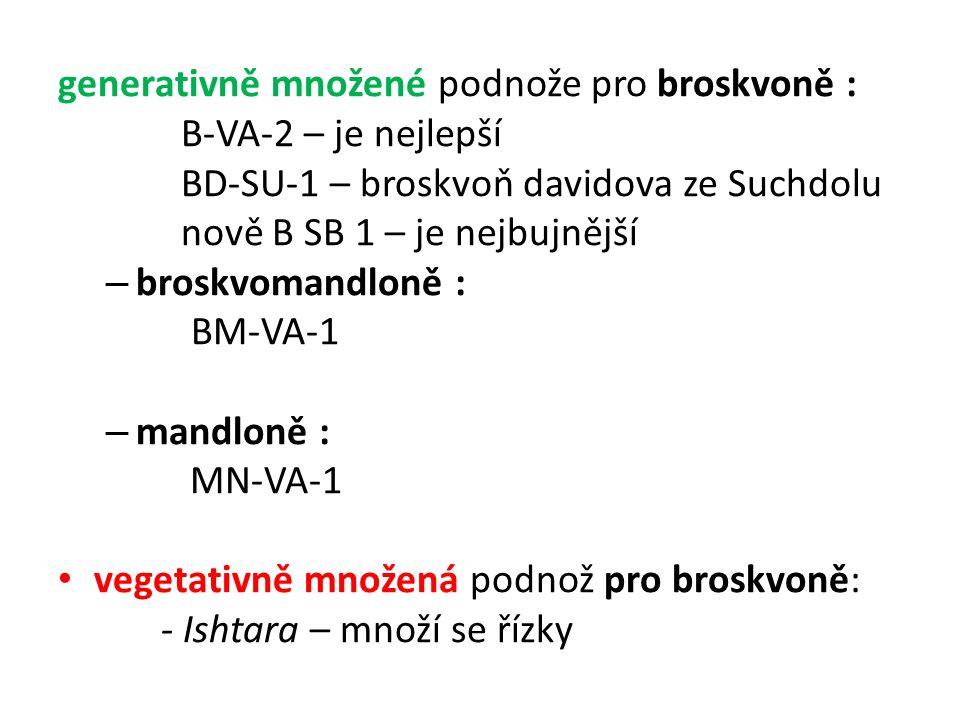 generativně množené podnože pro broskvoně : B-VA-2 – je nejlepší BD-SU-1 – broskvoň davidova ze Suchdolu nově B SB 1 – je nejbujnější – broskvomandloně : BM-VA-1 – mandloně : MN-VA-1 vegetativně množená podnož pro broskvoně: - Ishtara – množí se řízky