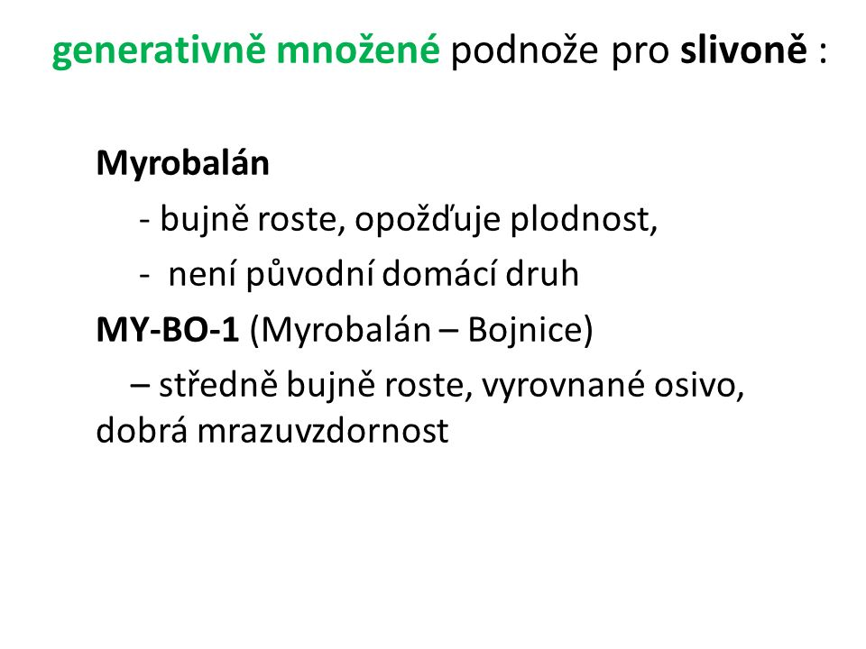 generativně množené podnože pro slivoně : Myrobalán - bujně roste, opožďuje plodnost, - není původní domácí druh MY-BO-1 (Myrobalán – Bojnice) – středně bujně roste, vyrovnané osivo, dobrá mrazuvzdornost