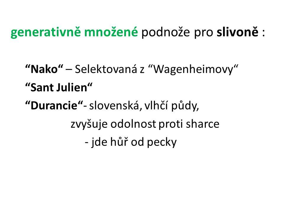 """generativně množené podnože pro slivoně : """"Nako"""" – Selektovaná z """"Wagenheimovy"""" """"Sant Julien"""" """"Durancie""""- slovenská, vlhčí půdy, zvyšuje odolnost prot"""
