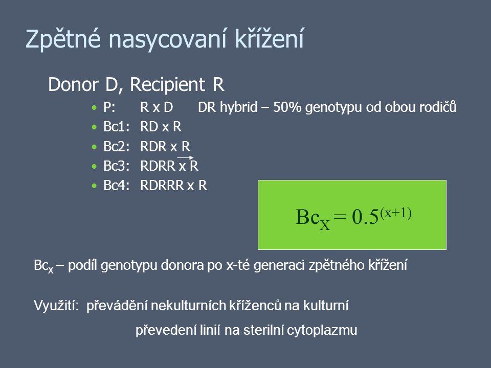 Zpětné nasycovaní křížení Donor D, Recipient R P:R x D DR hybrid – 50% genotypu od obou rodičů Bc1:RD x R Bc2:RDR x R Bc3:RDRR x R Bc4:RDRRR x R Bc X = 0.5 (x+1) Bc X – podíl genotypu donora po x-té generaci zpětného křížení Využití: převádění nekulturních kříženců na kulturní převedení linií na sterilní cytoplazmu
