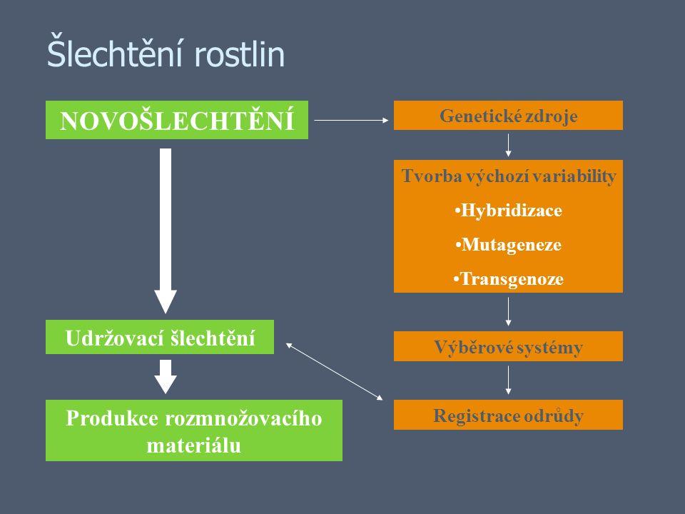 Cytoplazmaticko jaderná sterilita Typy cytoplazmy (plazmotyp) –Sterilní plazmotyp (mutované mitochondriální geny) –Normální plazmotyp Jaderná složka (genotyp) –Geny obnovy pylové fertility Rf - geny (fertility restorer) –Obvykle několik