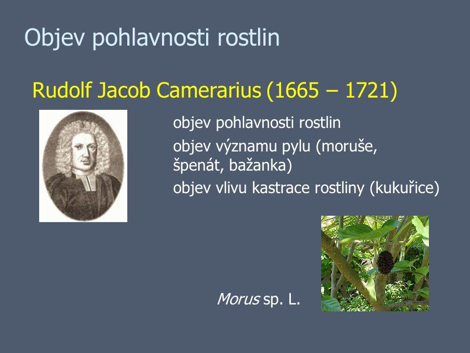 Objev pohlavnosti rostlin Rudolf Jacob Camerarius (1665 – 1721) objev pohlavnosti rostlin objev významu pylu (moruše, špenát, bažanka) objev vlivu kastrace rostliny (kukuřice) Morus sp.