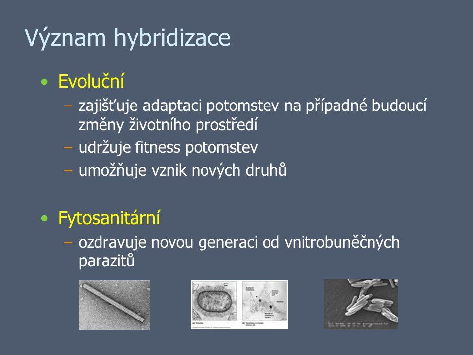 Význam hybridizace Evoluční –zajišťuje adaptaci potomstev na případné budoucí změny životního prostředí –udržuje fitness potomstev –umožňuje vznik nových druhů Fytosanitární –ozdravuje novou generaci od vnitrobuněčných parazitů