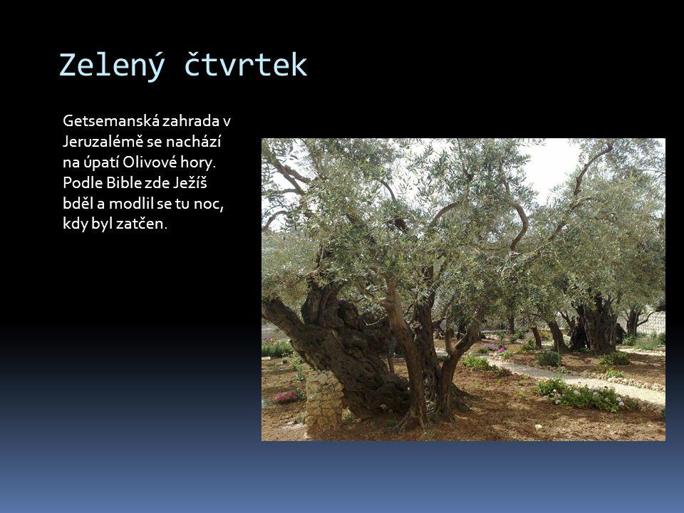 Zelený čtvrtek Getsemanská zahrada v Jeruzalémě se nachází na úpatí Olivové hory. Podle Bible zde Ježíš bděl a modlil se tu noc, kdy byl zatčen.