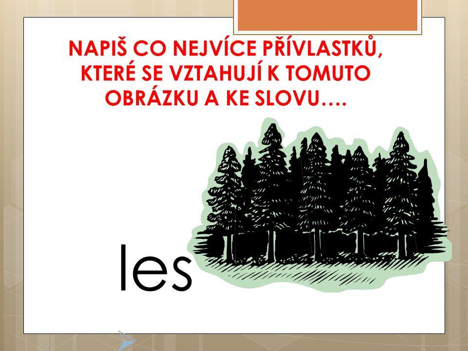 NAPIŠ CO NEJVÍCE PŘÍVLASTKŮ, KTERÉ SE VZTAHUJÍ K TOMUTO OBRÁZKU A KE SLOVU….  les