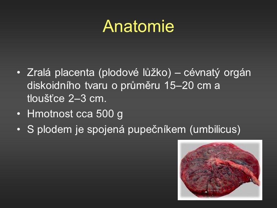 Anatomie Zralá placenta (plodové lůžko) – cévnatý orgán diskoidního tvaru o průměru 15–20 cm a tloušťce 2–3 cm.
