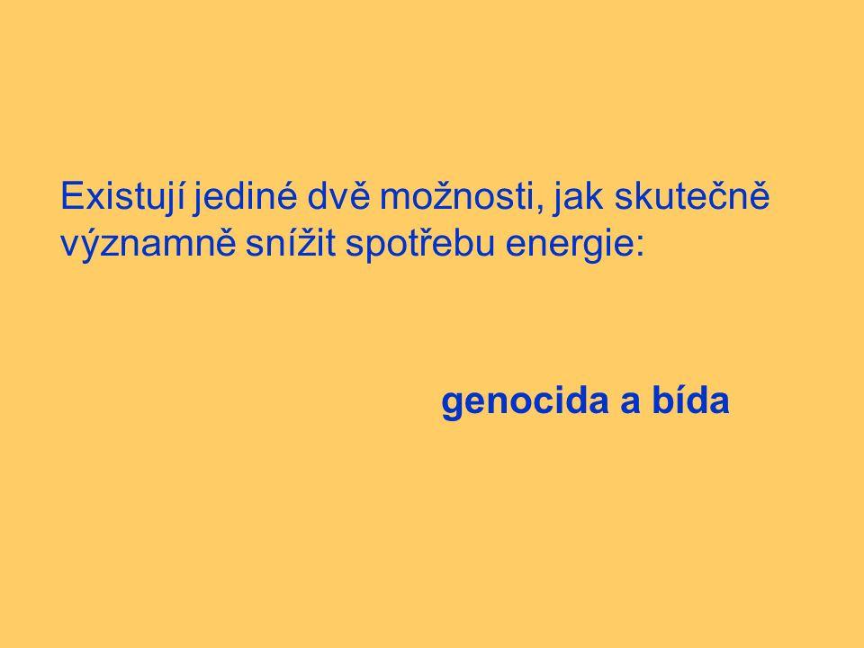 Existují jediné dvě možnosti, jak skutečně významně snížit spotřebu energie: genocida a bída