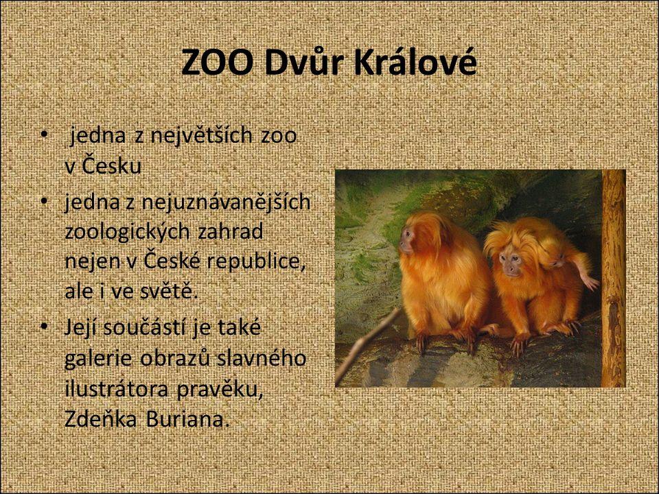 ZOO Dvůr Králové jedna z největších zoo v Česku jedna z nejuznávanějších zoologických zahrad nejen v České republice, ale i ve světě.
