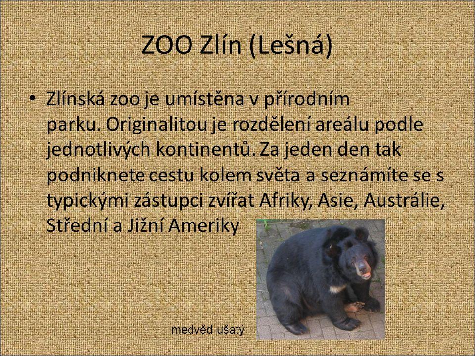 ZOO Zlín (Lešná) Zlínská zoo je umístěna v přírodním parku.