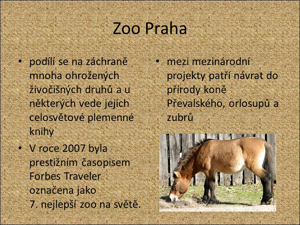 Zoo Praha podílí se na záchraně mnoha ohrožených živočišných druhů a u některých vede jejich celosvětové plemenné knihy V roce 2007 byla prestižním časopisem Forbes Traveler označena jako 7.