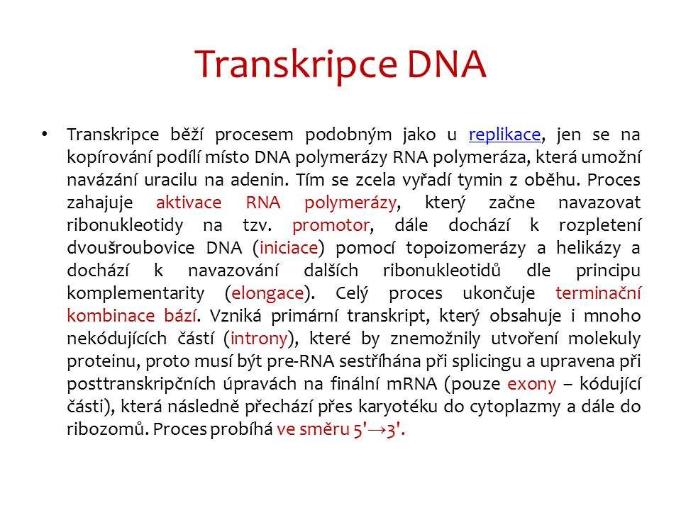 Transkripce DNA http://biogeonerd.blogspot.cz/2013_01_01_archive.html http://cs.wikipedia.org/wiki/Transkripce_(DNA)