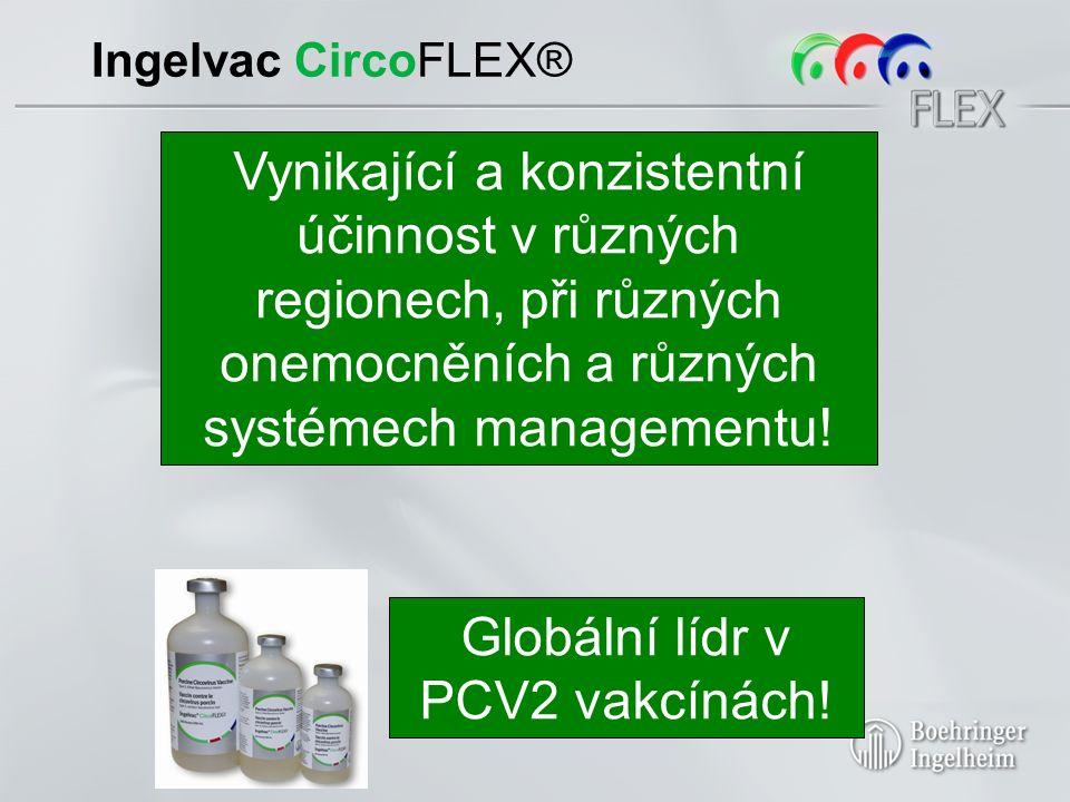 Ingelvac CircoFLEX® Registrováno ve 45 zemích Zkušenost s více než 300 miliony dávek 5 peer-reviewed terénních studií > 80 publikací v 15 zemích na 5 kontinentech Vynikající a konzistentní účinnost v různých regionech, při různých onemocněních a různých systémech managementu!