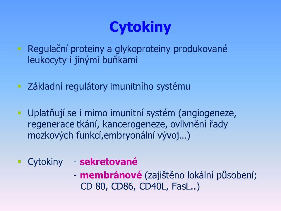 Cytokiny  Regulační proteiny a glykoproteiny produkované leukocyty i jinými buňkami  Základní regulátory imunitního systému  Uplatňují se i mimo imunitní systém (angiogeneze, regenerace tkání, kancerogeneze, ovlivnění řady mozkových funkcí,embryonální vývoj…)  Cytokiny- sekretované - membránové (zajištěno lokální působení; CD 80, CD86, CD40L, FasL..)