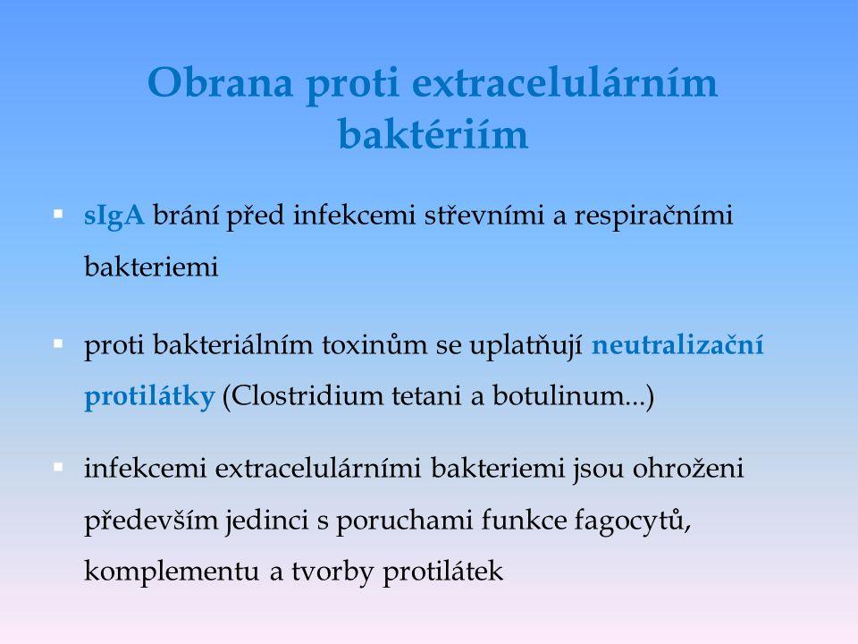  sIgA brání před infekcemi střevními a respiračními bakteriemi  proti bakteriálním toxinům se uplatňují neutralizační protilátky (Clostridium tetani a botulinum...)  infekcemi extracelulárními bakteriemi jsou ohroženi především jedinci s poruchami funkce fagocytů, komplementu a tvorby protilátek