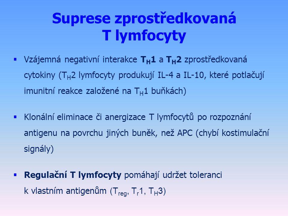 Suprese zprostředkovaná T lymfocyty  Vzájemná negativní interakce T H 1 a T H 2 zprostředkovaná cytokiny (T H 2 lymfocyty produkují IL-4 a IL-10, které potlačují imunitní reakce založené na T H 1 buňkách)  Klonální eliminace či anergizace T lymfocytů po rozpoznání antigenu na povrchu jiných buněk, než APC (chybí kostimulační signály)  Regulační T lymfocyty pomáhají udržet toleranci k vlastním antigenům (T reg, T r 1, T H 3)