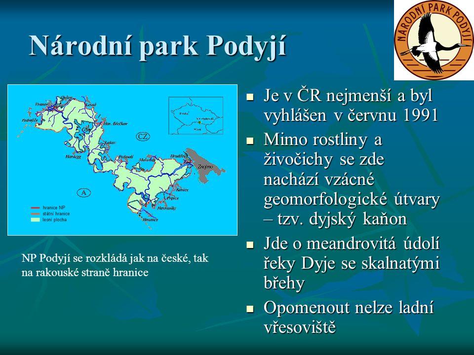 Národní park Podyjí Je v ČR nejmenší a byl vyhlášen v červnu 1991 Je v ČR nejmenší a byl vyhlášen v červnu 1991 Mimo rostliny a živočichy se zde nachází vzácné geomorfologické útvary – tzv.