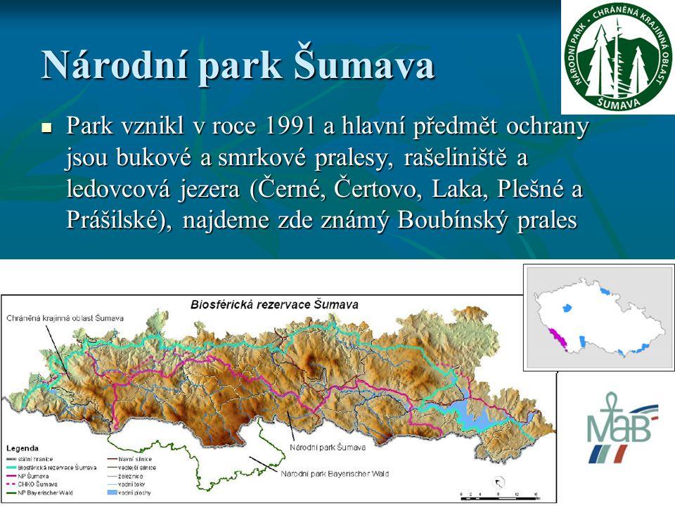 Národní park Šumava Park vznikl v roce 1991 a hlavní předmět ochrany jsou bukové a smrkové pralesy, rašeliniště a ledovcová jezera (Černé, Čertovo, Laka, Plešné a Prášilské), najdeme zde známý Boubínský prales Park vznikl v roce 1991 a hlavní předmět ochrany jsou bukové a smrkové pralesy, rašeliniště a ledovcová jezera (Černé, Čertovo, Laka, Plešné a Prášilské), najdeme zde známý Boubínský prales