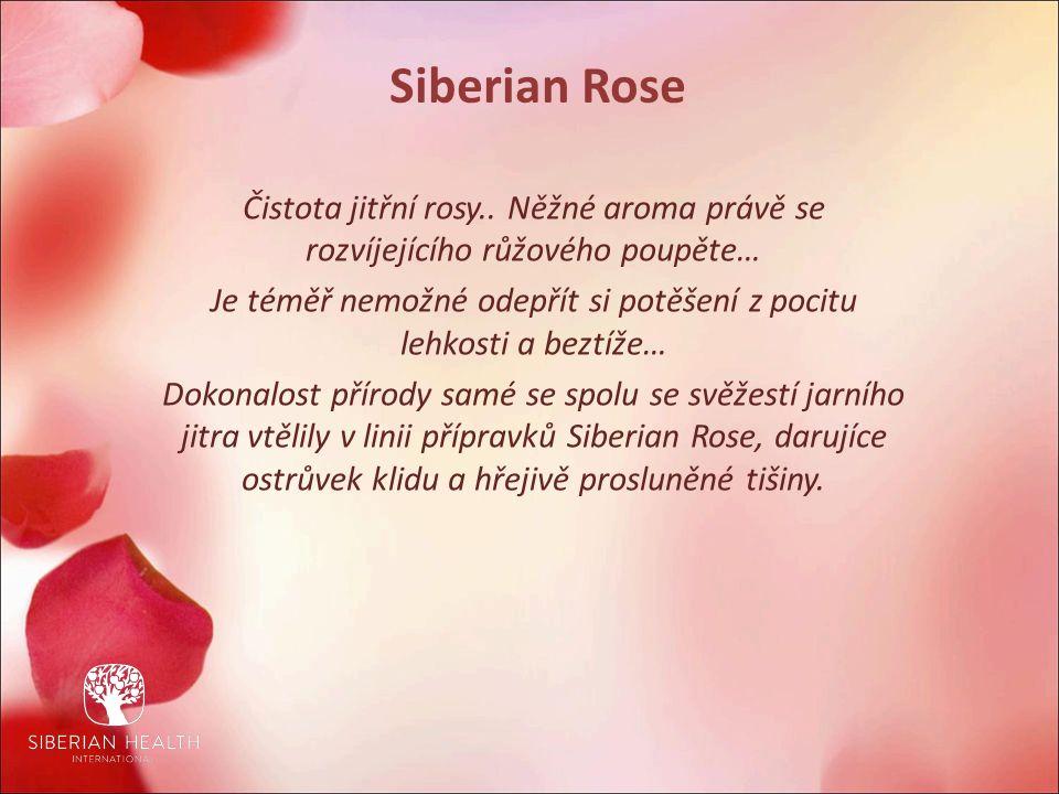 Siberian Rose Čistota jitřní rosy..