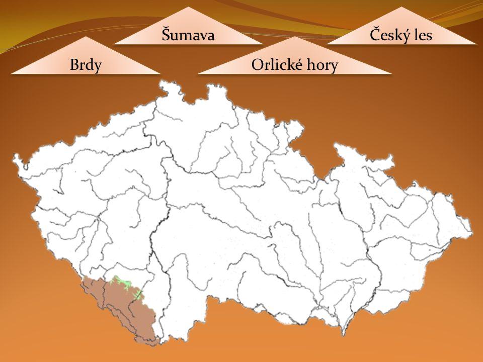 Brdy Orlické hory Šumava Český les